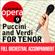 Turandot: Nessun Dorma - Andante Sostenuto (no Vocals) [Karaoke Version] - Czech Symphony Orchestra & Julian Bigg