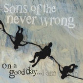 Sons of the Never Wrong - I Saw Sorrow
