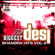 The Biggest Desi Bhangra Hits, Vol. 2 - Various Artists