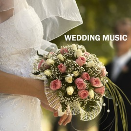 Wedding Music Guitar Flute Music Duet Wedding Ceremony Music Wedding Reception Songs Background Music For An Elegante Wedding Dinner Party And
