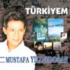 Mustafa Yıldızdoğan - Türkiyem artwork