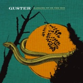 Guster - Lightning Rod