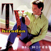 Ty Herndon - Big Hopes artwork