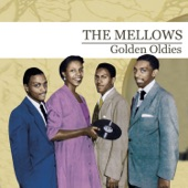 The Mellows - Lucky Guy