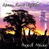 Project Maine - African Gospel Rhythms