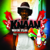 K'naan - Wavin' Flag (Coca-Cola Celebration Mix) artwork