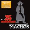 25 Bandazos de Machos, Vol. 1 - Banda Machos