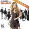 Shakira - Waka Waka (This Time for Africa)[feat. Freshlyground] (The Official 2010 FIFA World Cup Song) grafismos
