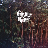 The Republic Tigers - The Infidel