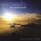 Maccabeats - Lecha Dodi