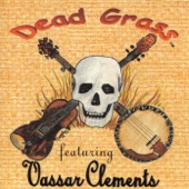 Vassar Clements - Mexicali Blues