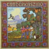 Tündérkaszinó - Rockzene gyerekeknek