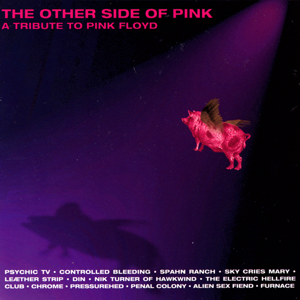 The Other Side of Pink - A Tribute to Pink Floyd Various Artists