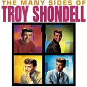 The Many Sides of Troy Shondell