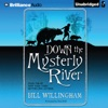 Down the Mysterly River (Unabridged)
