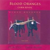 Blood Oranges - Thief