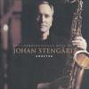 Johan Stengård - Bridge Over Troubled Water bild