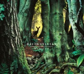 David Sylvian - The Department of Dead Letters