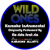 Wild Ones (Originally Performed By Flo Rida feat Sia) [Karaoke Instrumental]