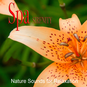 Music For Body And Soul - Spa Relaxation (Relaxing SPA Music)