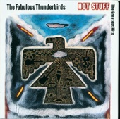 The Fabulous Thunderbirds - Rock This Place