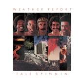 Weather Report - Five Short Stories