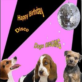 Happy Birthday Disco Singing Dogs
