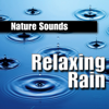 Meditation On Rain - Nature Sounds