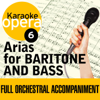 Karaoke Opera: Arias for Baritone & Bass - Various Artists