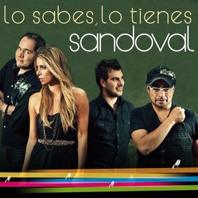 Lo Sabes, Lo Tienes (Español) - Single - Sandoval