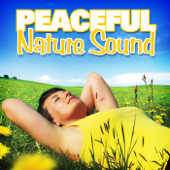 Lakeside Waves Wash Over You With Health and Well Being - Nature Sounds for Sleep and Relaxation