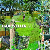 Paul Weller - Cold Moments