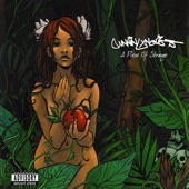 Cunninlynguists - Never Know Why