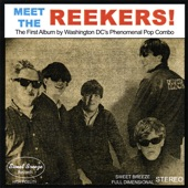 The Reekers - Don't Call Me Flyface (1964)