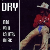 Into Your Country Music (Remastered) - EP