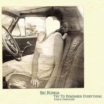Try to Remember Everything (Rare & Unreleased) - Bic Runga