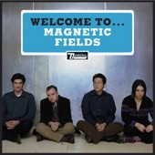 The Magnetic Fields - Yeah! Oh, Yeah!