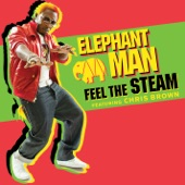 Feel the Steam (feat. Chris Brown) - Single