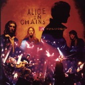 MTV Unplugged: Alice In Chains (Live)