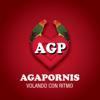 Agapornis - Volando Con Ritmo - Agapornis