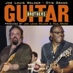 Joe Louis Walker - I Like It This Way