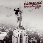 David Bromberg - Someone Else's Blues