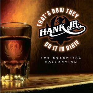 Big & Rich, Gretchen Wilson, Hank Williams, Jr. & Van Zant - That's How They Do It In Dixie