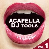 Acapella DJ Tools Vol.1