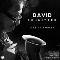 David Schnitter - David Schnitter (feat. Anthony Pinciotti, Marti Mabin, Ugonna Okegwo & Spike Wilner) [Live At Smalls] artwork