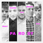 What Makes You Beautiful Parody