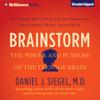 Daniel J. Siegel, MD - Brainstorm: The Power and Purpose of the Teenage Brain (Unabridged)  artwork