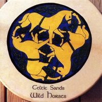 Wild Horses by Celtic Sands on Apple Music