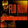 Wild Ones Remixes feat Sia