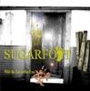 Sugarfoot - While You Were Dreamin